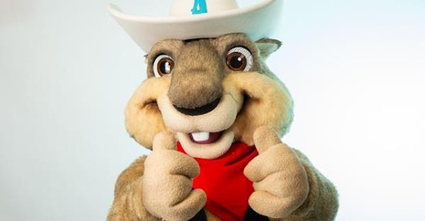 'Ruckus' a better mascot than that . . . other thing